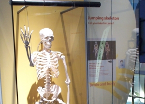 Jumping Skeleton